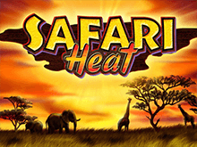 Играть бесплатно в Вулкане Делюкс в Safari Heat